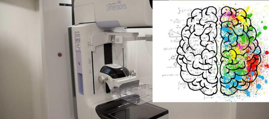 Brains Versus Breast: Which One To Choose?